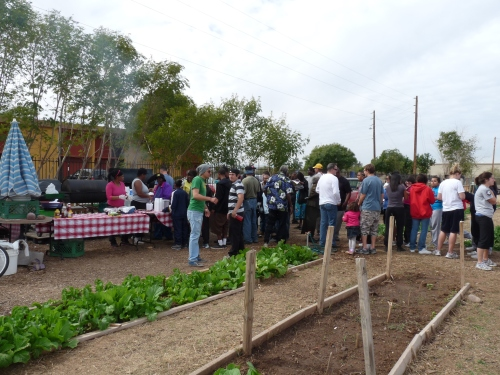line for lunch at community garden