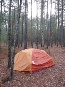 Tent at Congaree National Park