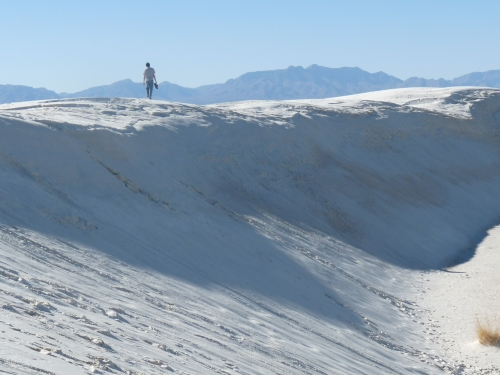 Jay on dunes at White Sands National Monument
