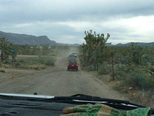 drive to the volunteer project at Joshua Tree National Natural Landmark