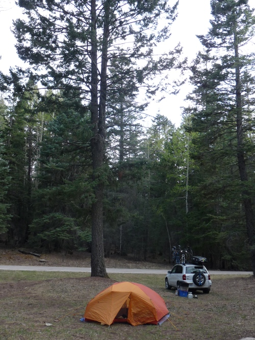 Our camp site in Cloudcroft, NM near the Sunspot scenic byway