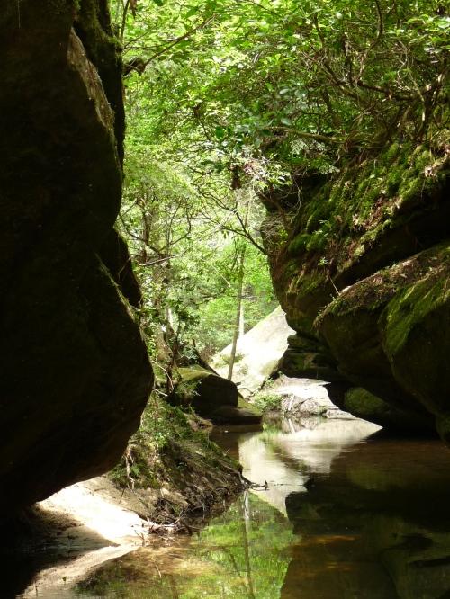 dismals canyon