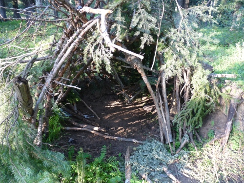 man made shelter in the woods