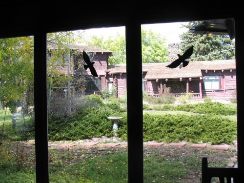 view of the back of Riordan Mansion from the visitors center