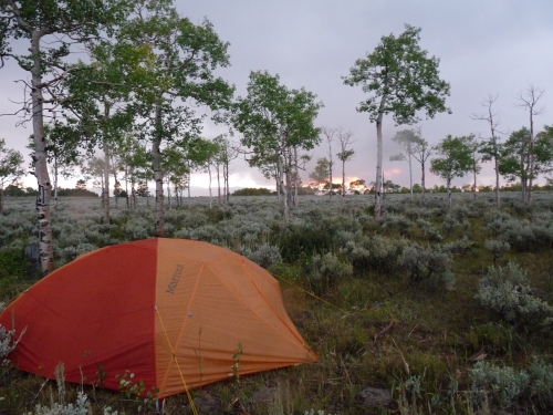 our tent site in the Manti La Sal National Forest at sunset