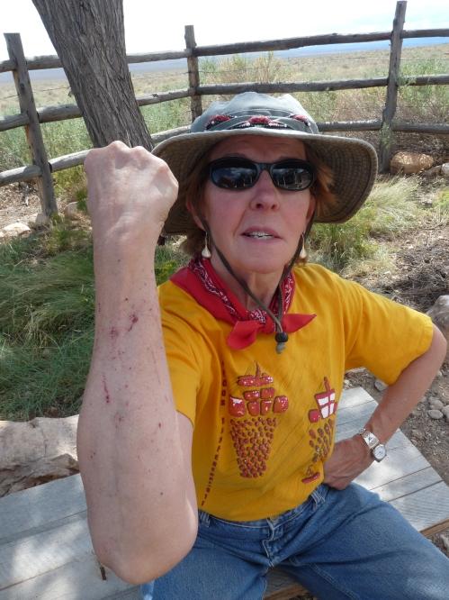 Dorothy, Grand Canyon Trust volunteer