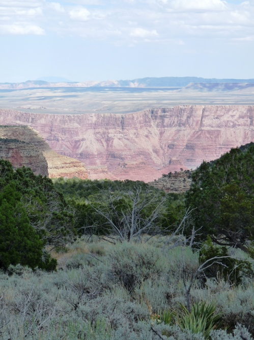 view of Triple Alcoves, Marble Canyon from Saddle Mountain Trail