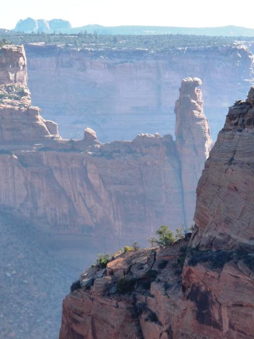 Canyon de Chelly near Spider Rock