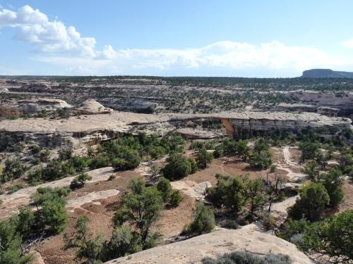 view of Cedar Mesa