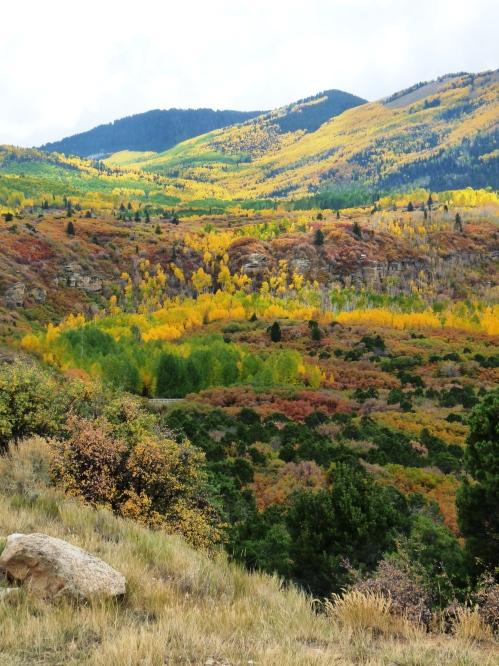 Abajo Peak in fall colors