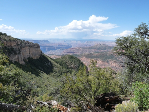 view from along the rainbow rim trail