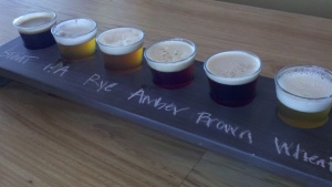 sampler at Ouray Brewery