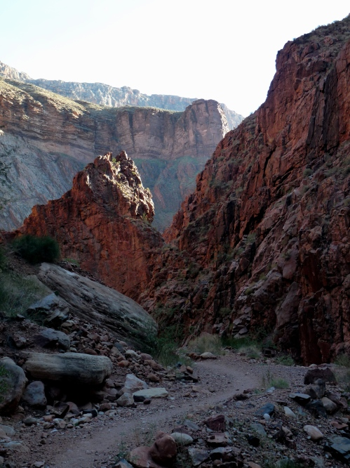 View from North Kaibab Trail