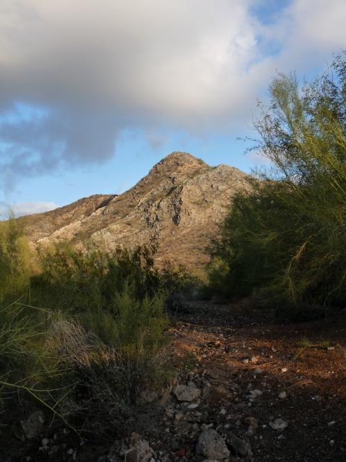 Phoenix Mountain Preserve