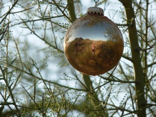 ornament in the desert