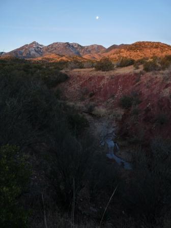 santa rita mountains at sunrise