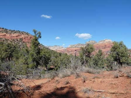 view from lunch spot in Sedona