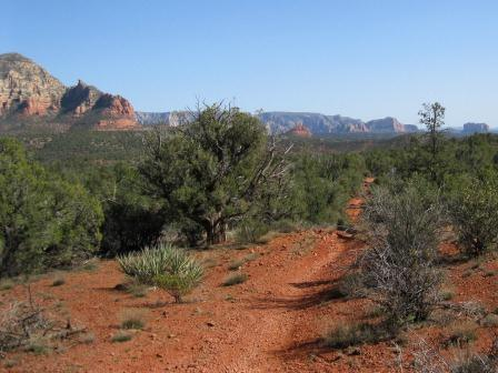trail in sedona